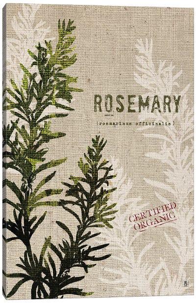 Organic Rosemary, No Butterfly Canvas Art Print