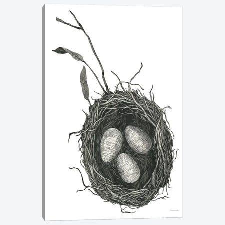 Springtime Nest III Canvas Print #WAC8751} by Sara Zieve Miller Art Print