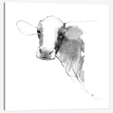 Cow II Dark Square Canvas Print #WAC8786} by Avery Tillmon Canvas Print