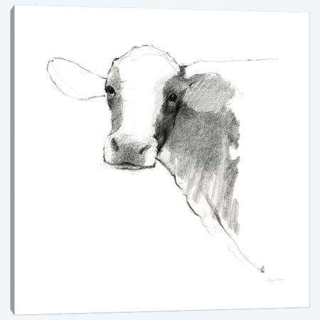 Cow II Dark Square Canvas Print #WAC8786} by Avery Tillmon Canvas Print