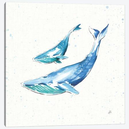 Maritime VIII Canvas Print #WAC8828} by Daphne Brissonnet Canvas Art Print