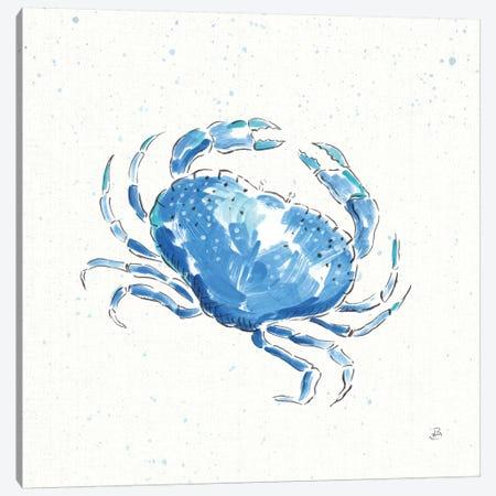Maritime X Canvas Print #WAC8829} by Daphne Brissonnet Canvas Print