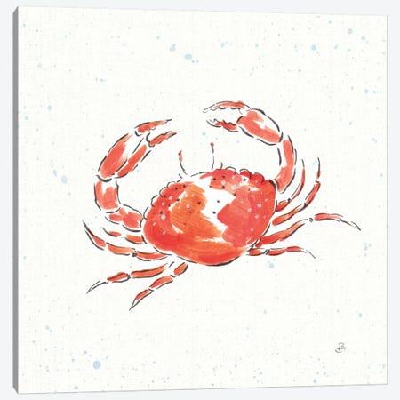 Maritime XI Canvas Print #WAC8830} by Daphne Brissonnet Canvas Artwork