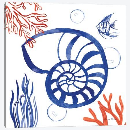 Coastal Jewels I Canvas Print #WAC8839} by Farida Zaman Canvas Art