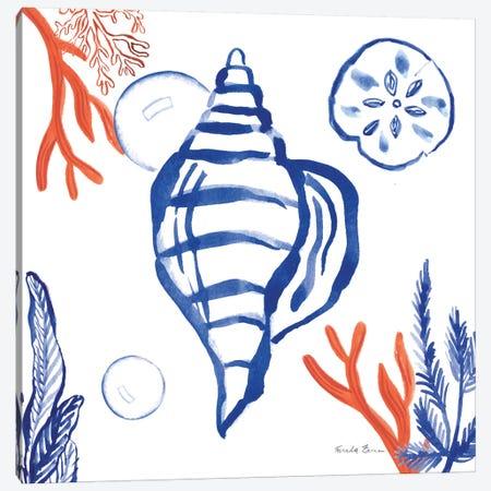 Coastal Jewels II Canvas Print #WAC8840} by Farida Zaman Art Print