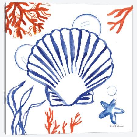 Coastal Jewels III Canvas Print #WAC8841} by Farida Zaman Art Print
