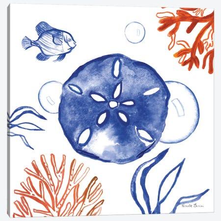 Coastal Jewels IV Canvas Print #WAC8842} by Farida Zaman Art Print