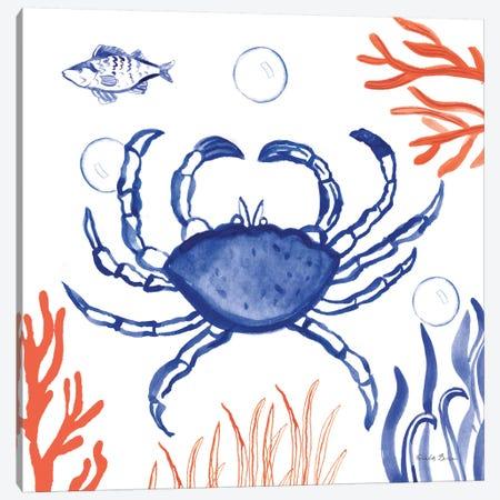 Coastal Jewels V Canvas Print #WAC8843} by Farida Zaman Canvas Print
