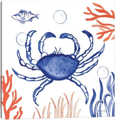 Coastal Jewels V Canvas Art Print