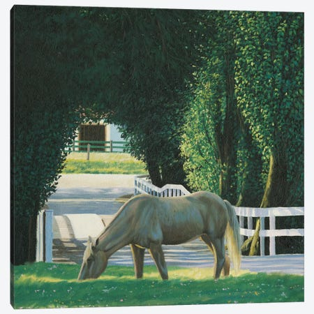 Farm Life VI 3-Piece Canvas #WAC8857} by James Wiens Canvas Print