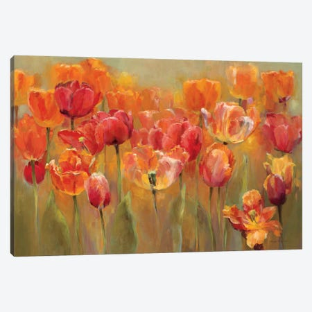 Tulips in the Midst III  Canvas Print #WAC889} by Marilyn Hageman Canvas Wall Art
