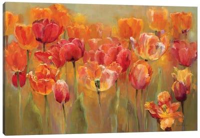 Tulips in the Midst III  Canvas Art Print
