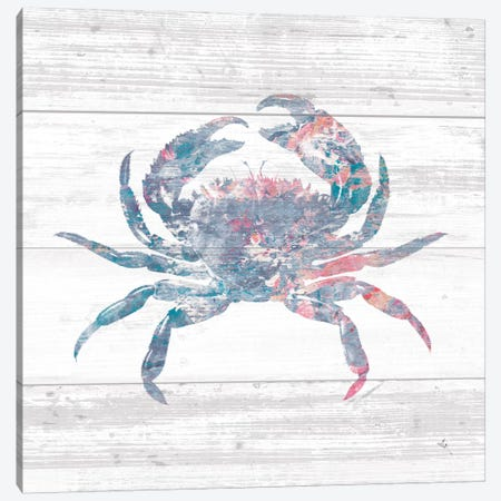 Ocean Life I Canvas Print #WAC8905} by Sarah Adams Art Print