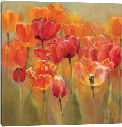 Tulips in the Midst IV Canvas Print #WAC890