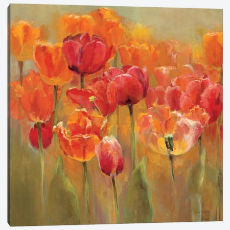 Tulips in the Midst IV 3-Piece Canvas #WAC890} by Marilyn Hageman Art Print