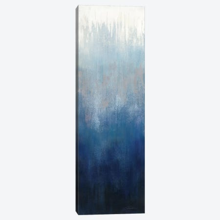 Silver Wave I Canvas Print #WAC8911} by Silvia Vassileva Art Print