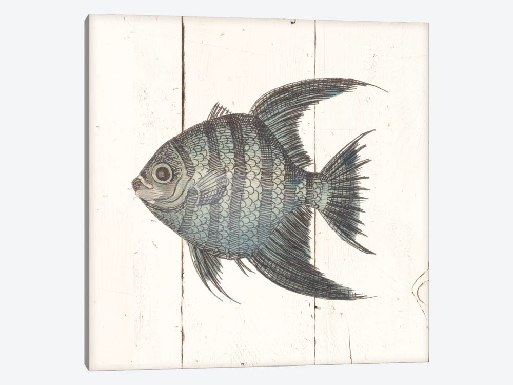 Fish Sketches II Shiplap by Wild Apple Portfolio 1-piece Canvas Artwork