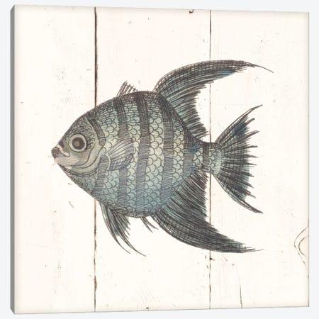 Fish Sketches II Shiplap Canvas Print #WAC8929} by Wild Apple Portfolio Canvas Artwork