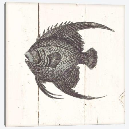 Fish Sketches IV Shiplap Canvas Print #WAC8931} by Wild Apple Portfolio Art Print