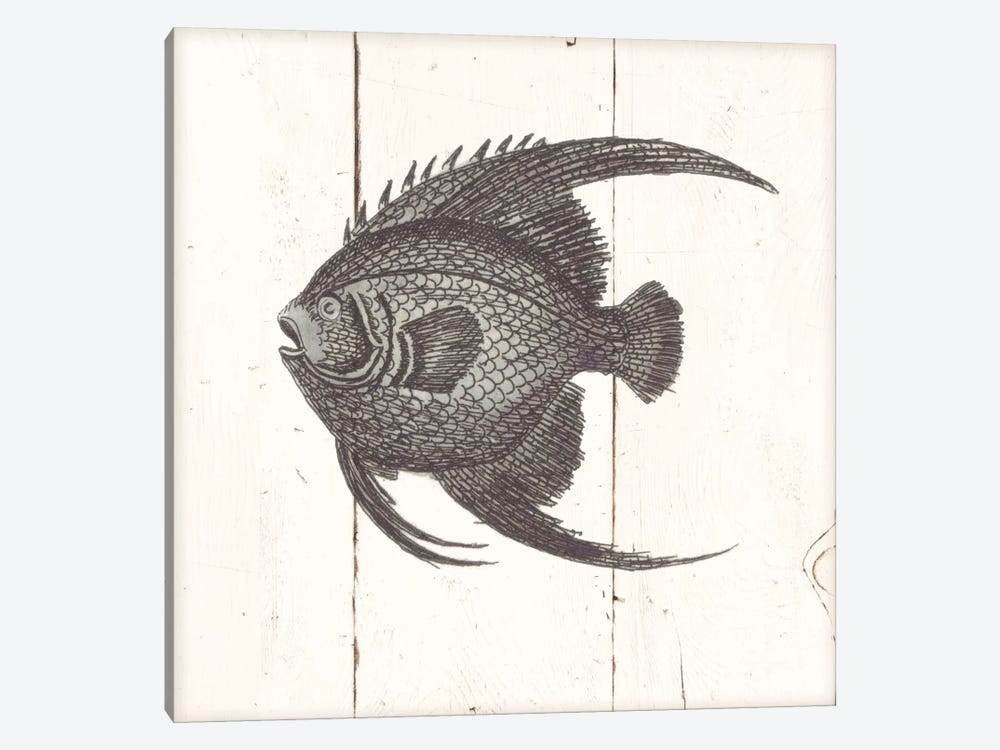 Fish Sketches IV Shiplap by Wild Apple Portfolio 1-piece Canvas Art Print