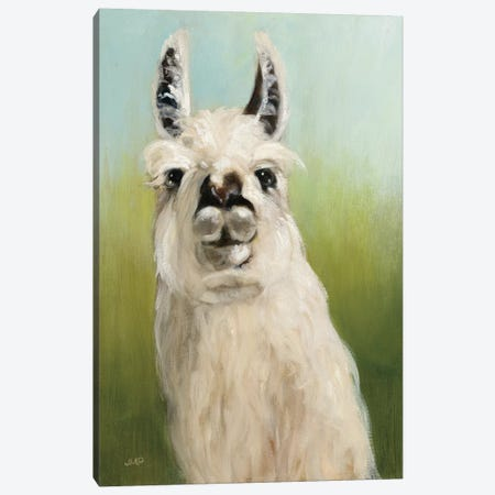Who's Your Llama I Canvas Print #WAC8953} by Julia Purinton Art Print