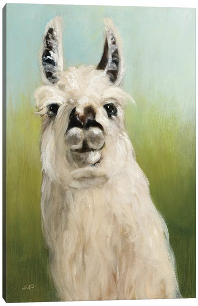 Who's Your Llama I Canvas Art Print