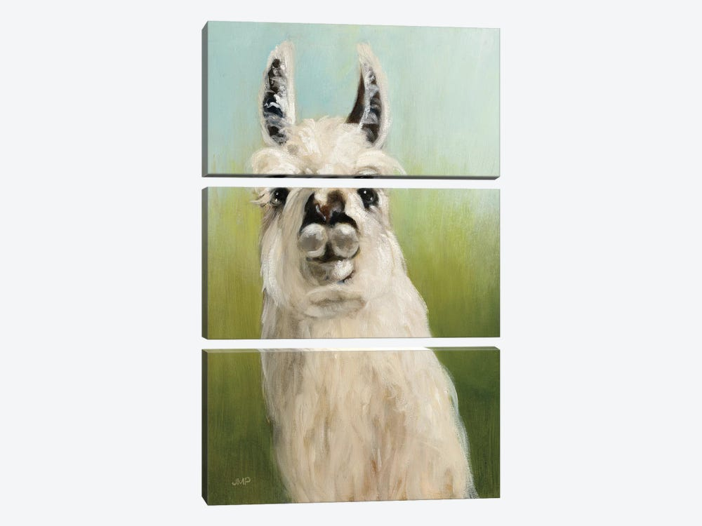 Who's Your Llama I by Julia Purinton 3-piece Canvas Print