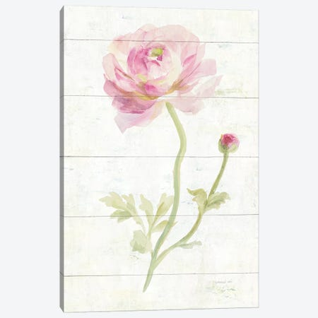 June Blooms I Canvas Print #WAC8984} by Danhui Nai Canvas Print