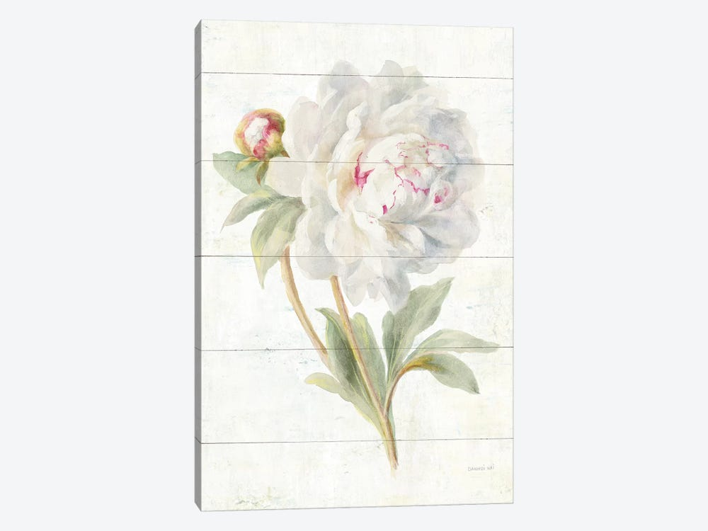 June Blooms II by Danhui Nai 1-piece Canvas Wall Art