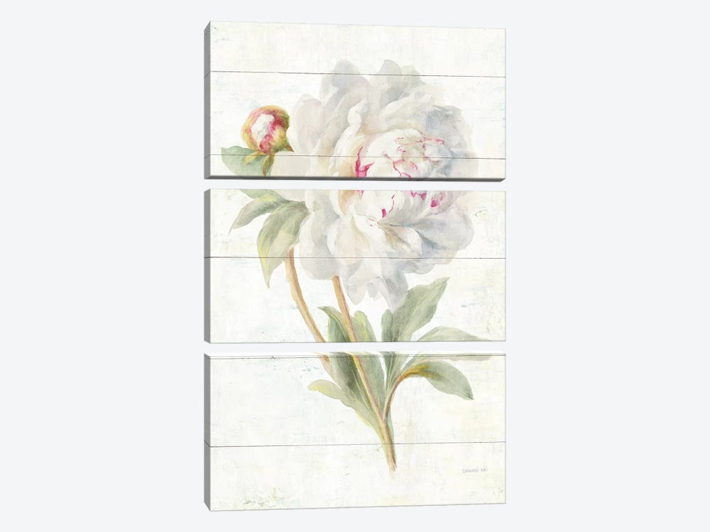 June Blooms II by Danhui Nai 3-piece Canvas Artwork