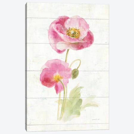June Blooms IV Canvas Print #WAC8986} by Danhui Nai Canvas Print