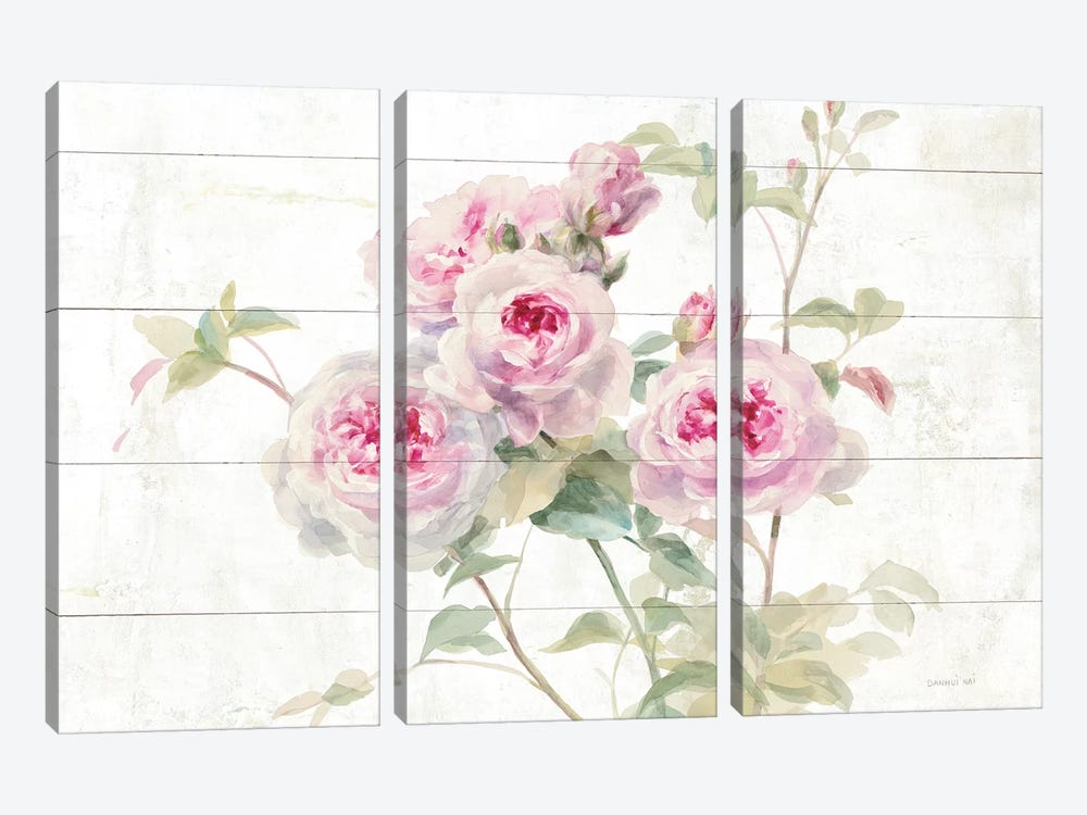 Sweet Roses On Wood by Danhui Nai 3-piece Canvas Art