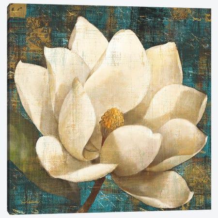 Magnolia Blossom Turquoise Canvas Print #WAC8} by Albena Hristova Canvas Art Print