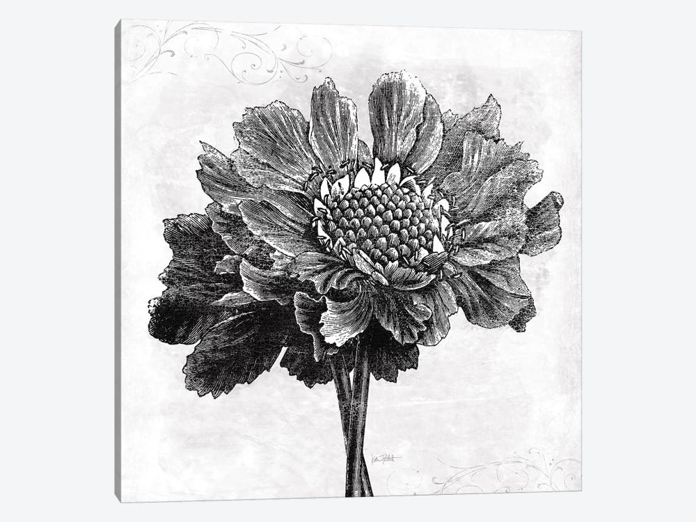 Spa Botanical I, B&W by Katie Pertiet 1-piece Canvas Artwork