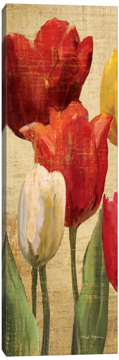Tulip Fantasy on Cream II  Canvas Print #WAC900