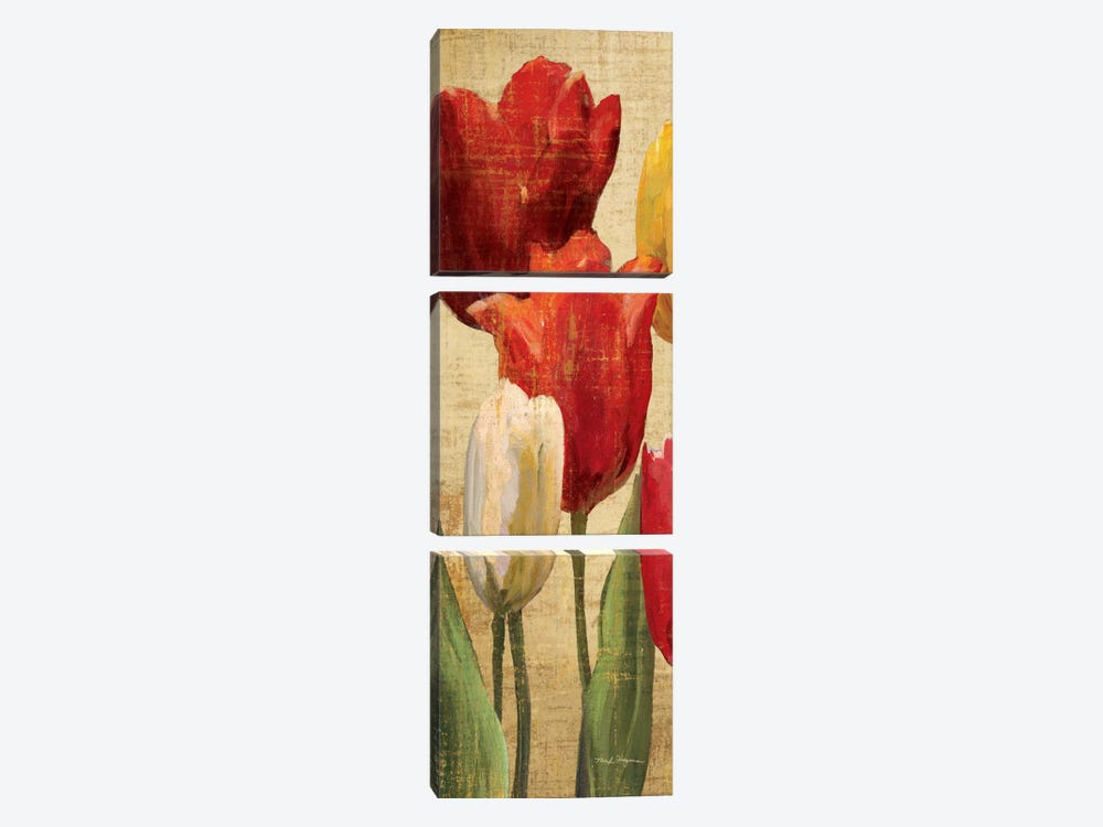 Tulip Fantasy on Cream II  by Marilyn Hageman 3-piece Canvas Art
