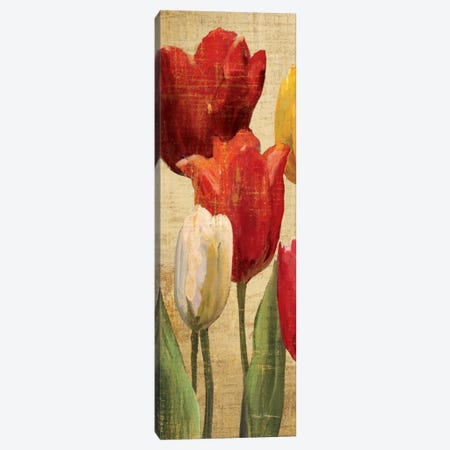 Tulip Fantasy on Cream II  Canvas Print #WAC900} by Marilyn Hageman Canvas Print