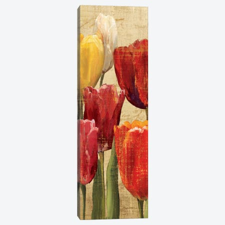 Tulip Fantasy on Cream III  Canvas Print #WAC901} by Marilyn Hageman Canvas Print