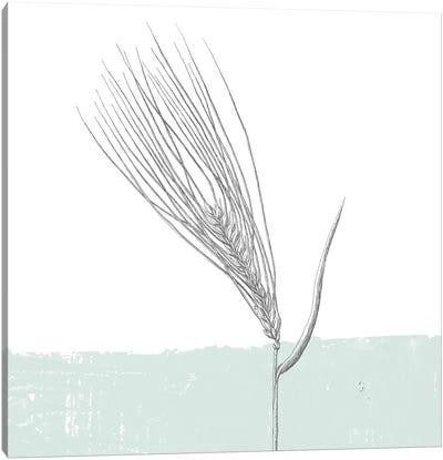 Barley Canvas Art Print