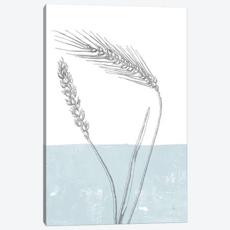 Wheat Canvas Print #WAC9031} by Sarah Adams Canvas Print