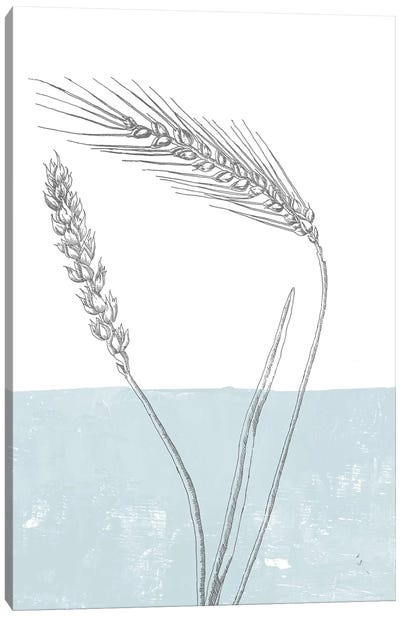 Wheat Canvas Art Print