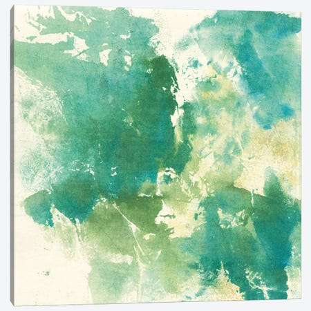 Mossy Rock I Canvas Print #WAC9054} by Chris Paschke Canvas Art