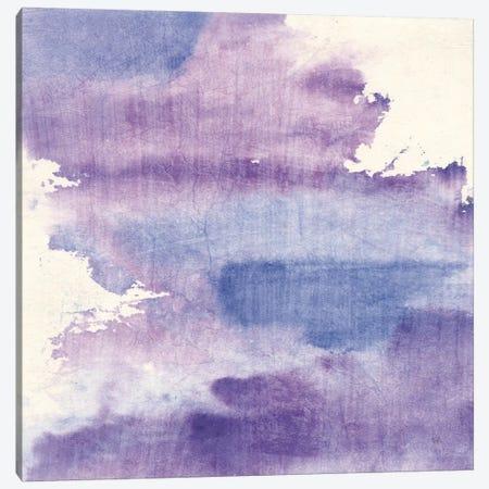 Purple Haze I Canvas Print #WAC9056} by Chris Paschke Canvas Wall Art