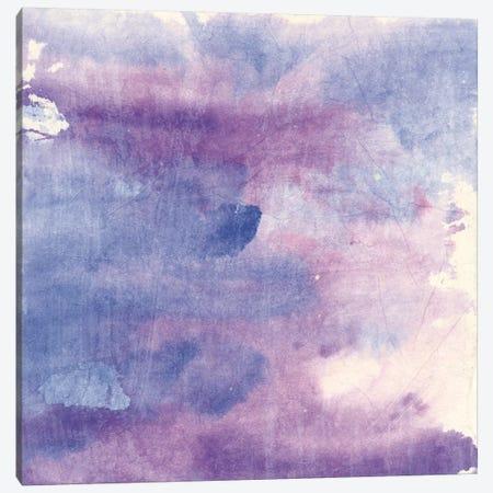 Purple Haze II Canvas Print #WAC9057} by Chris Paschke Canvas Artwork
