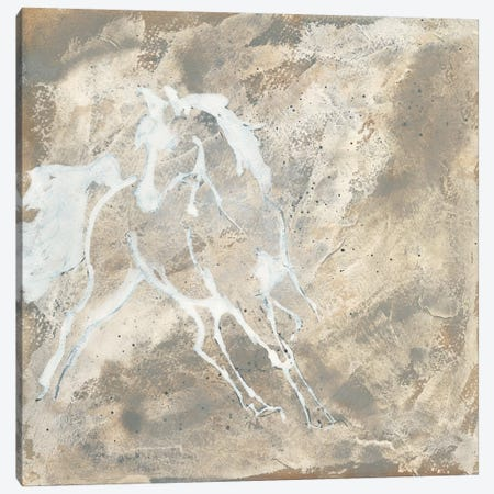 White Horse I Canvas Print #WAC9060} by Chris Paschke Canvas Art