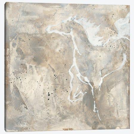 White Horse II Canvas Print #WAC9061} by Chris Paschke Canvas Artwork