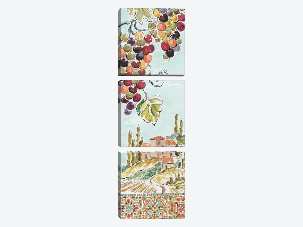Tuscan Breeze IV by Daphne Brissonnet 3-piece Canvas Wall Art