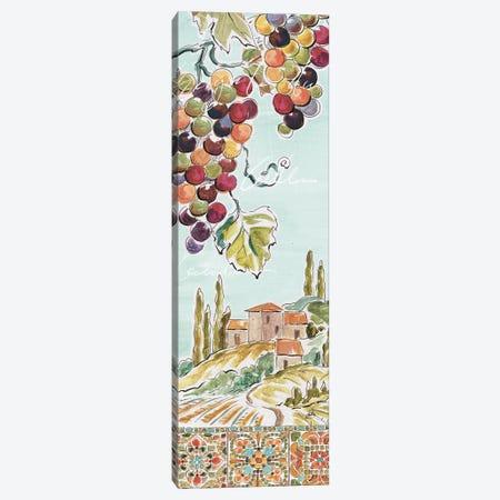 Tuscan Breeze IV Canvas Print #WAC9083} by Daphne Brissonnet Canvas Art