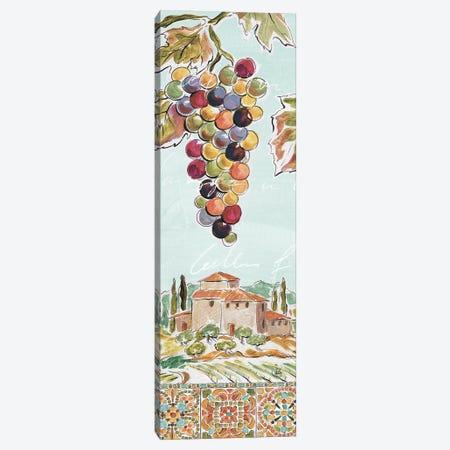 Tuscan Breeze V Canvas Print #WAC9084} by Daphne Brissonnet Canvas Print
