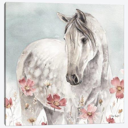Wild Horses IV Canvas Print #WAC9158} by Lisa Audit Canvas Wall Art